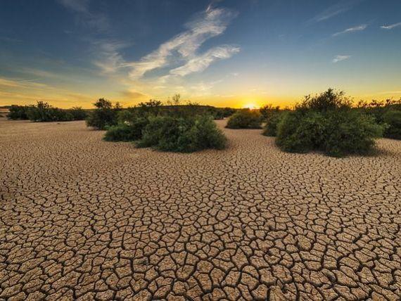 Schimbările climatice dau peste cap marile orașe ale lumii. Anul în care clima la Londra va fi ca la Madrid, iar la Paris, ca la Canberra
