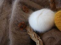 Gap, Zara și H M renunță să mai folosească mohair, după apariția unor filmări ce prezintă capre maltratate în Africa de Sud