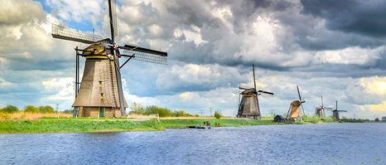 Sute de joburi pentru români în Olanda. Ce salarii oferă angajatorii pentru bucătari, ingineri și agricultori