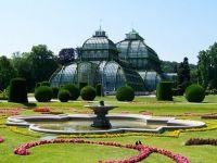 De ce este Viena orașul în care se trăiește cel mai bine. Este o capitală imperială, viața este ieftină, înghețata concurează cu cea italiană, iar vinul  creşte  în oraş