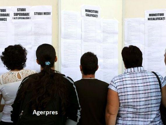 Rata șomajului a scăzut sub 3%, dar România rămâne între țările UE cu cei mai mulți șomeri tineri