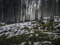 România, între două furtuni din Atlantic și Mediterană. Mase de aer foarte rece vor lovi Europa