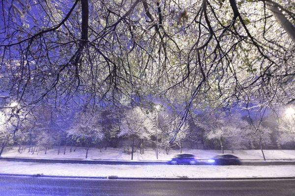Prima ninsoare din București a acoperit străzile cu un strat de câțiva centrimetri de zăpadă, îngreunând circulația. FOTO: GRIGORE POPESCU/AGERPRES