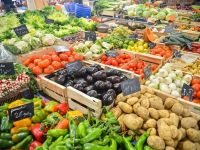 România a importat legume şi fructe în valoare de 1,26 mld. euro și a exportat de 6 ori mai puțin, deși deține a șasea cea mai mare suprafață agricolă din UE