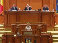 S-a votat hotărârea privind referendumul. PNL acuză:  Raportul comisiilor este un fals