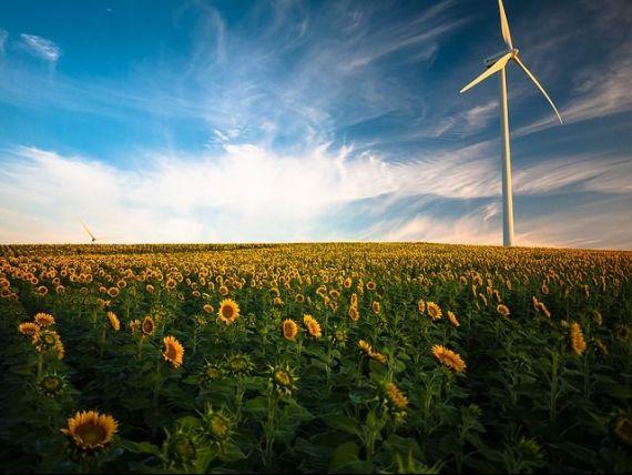 Vecinii construiesc de la zero un oraș alimentat exclusiv cu energie verde, situat în lunca Dunării. Proiect de 1 mld. euro