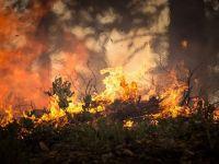 Europa, lovită de bdquo;iadul roșu . Corpul uman va resimţi temperaturi de 47-48 de grade
