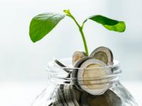 (P) 5 sfaturi pentru viitorii investitori