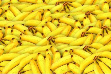 Bananele, pe cale de dispariţie şi tot mai scumpe. Cel mai mare producător din lume decretează starea de urgență