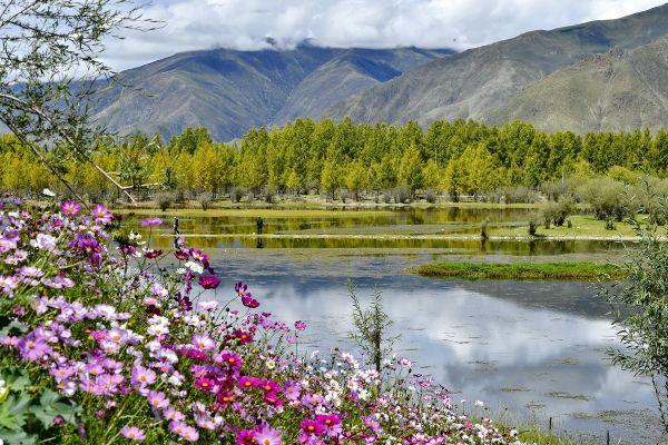 Peisaj de toamnă din Lhasa, regiunea autonomă Tibet. Foto: Agerpres/Xinhua/Zhang Rufeng